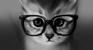 gozluklu-kediler5